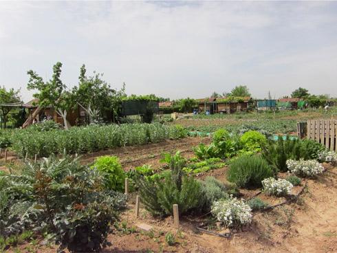Agroecologica y desarrollo rural