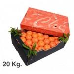 Caja mandarina 20 kg