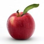 Frutas y Verduras Biovergel Alterbio