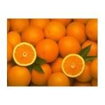 Productos ecológicos dieta ecológica