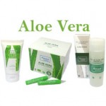 The Ecological Aloe Vera